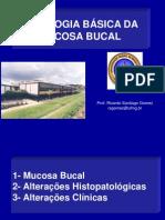 Histopatologia Básica-Mucosa Bucal