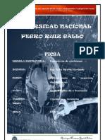Universidad Nacional Pedro Ruiz Gallo