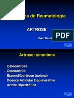 Aula 02 - Artrose