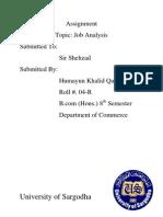 Assignment Job Description Report