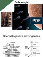 dezvoltare embrionara