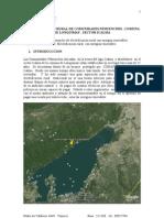 Proyecto Comunidad Pedro Calfuqueo - Icalma