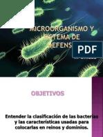 Bacterias y Virus IV Medio Autoguardado