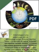 Aula Entomologia Introduc3a7c3a3o1