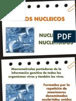 acidosnucleicos-2012