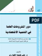 دور المشروعات العامة في التنمية الاقتصادية