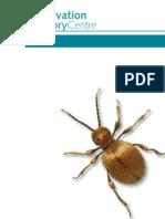 Preservation Pests Guide