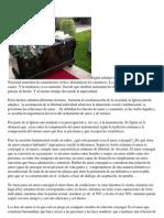 Texto de Ciudad Redonda, sección familia