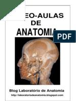 19499647 Anatomia Videoaulas