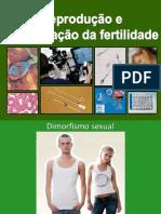 Sistemas reprodutores2012