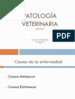 MVEPAT0402220121_Patología 2 alumnos