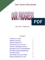 Progress Report June 2011