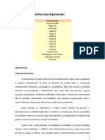 AULAS de SOCIOLOGIA DO TRABALHO e das ORGANIZAÇÕES (pdf)