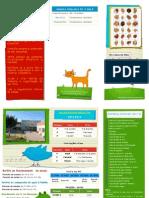 Informações 2012-2013 para a turma 1º B da EB1 Casal da Mira