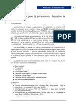 Guion - Electroforesis en Geles de Poliacrilamida