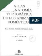 Atlas de Anatomia Topografica de Lo Animales Domesticos - Tomo 1