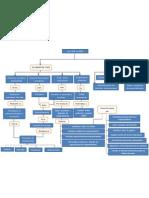 Mapa Conceptual Ley 1014