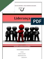 Liderança - Psico-sociologia das Organizações