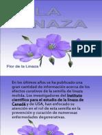Lali Naza