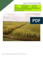 2012WS MET 2-Irrigated - Week 17 (October) Nueva Ecija