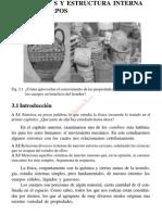 propiedades y Estructura Interna