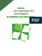 Programa CT Katherine Huaiquimilla