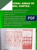 Lec 1 Functional Areas of Cerebral Cortex