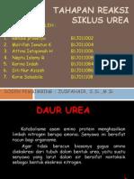 Daur Urea