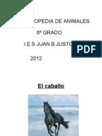 ENCICLOPEDIA DE ANIMALES 6º