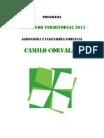 Programa CT Camilo Corvalán