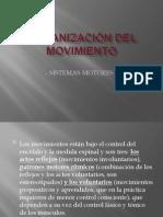 Organización del movimiento