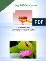 Neff PDF
