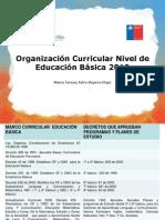 Organización Curricular 2012 María Teresa