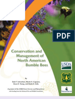 Conservation and Management of North American Bumble Bees