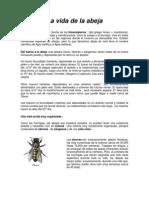 La vida de la abeja