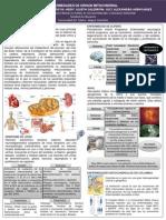 Enfermedades de Origen Mitocondrial