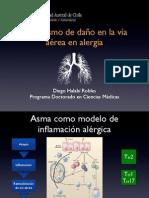 Mecanismo de daño a la vía aérea en Asma