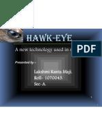Hawkeye 03