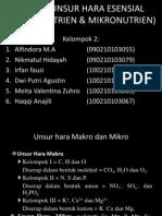 Fungsi Unsur Hara Esensial (Makronutrien & Mikronutrien)
