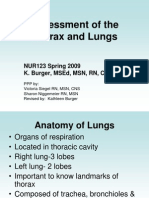 WEB Thorax and Lungs