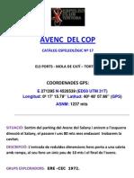AVENC DEL COP
