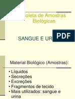 Coleta de Amostras Biológicas (sangue e urina)