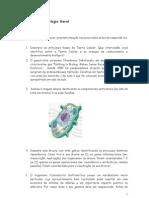 Estudo Dirigido- Biologia Geral(1)
