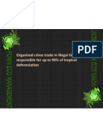 Organized Crime Trade in Illegal Timber Responsible for Up to 90% of Tropical Deforestation (1)