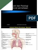 anatomi fisiologi pernafasan