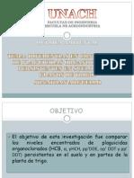 Organoclorados DIAPOSITIVAS
