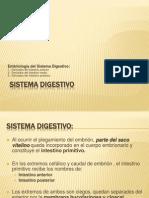Unidad IV Embriologia Del Sistema Digestivo