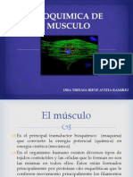 Bioquimica de Musculo 1
