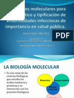 Biología molecular y aplicaciones en salud pública
