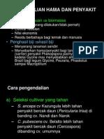 manajemen pastura-7-11